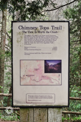 April 02, 2012_Chimney Tops