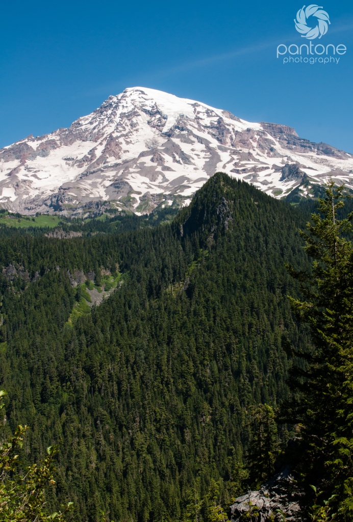July 30, 2014 Mt. Rainier