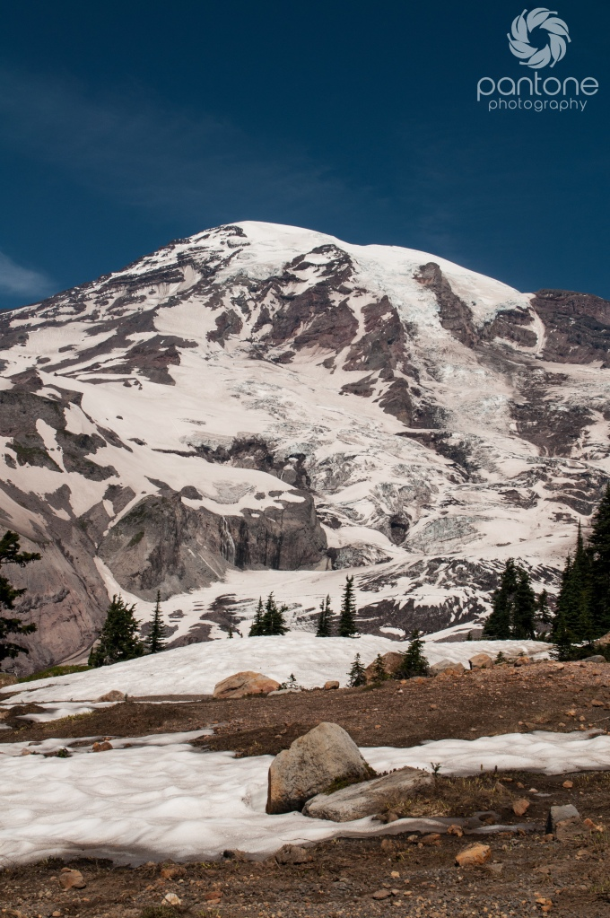 July 30, 2014Mt. Rainier