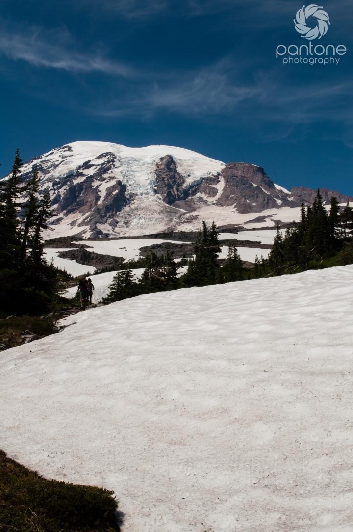 Travel Thursday – Mount Rainier National Park (Warning – photo intensivepost)