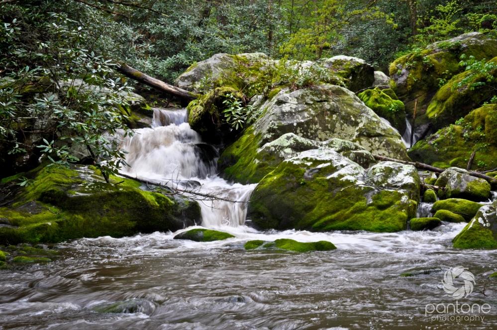 April 03, 2012_Great Smoky Mountains