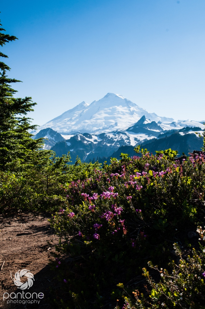 Travel Thursday – Artist Point, WashingtonState