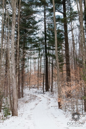February 17, 2015_untitled_004