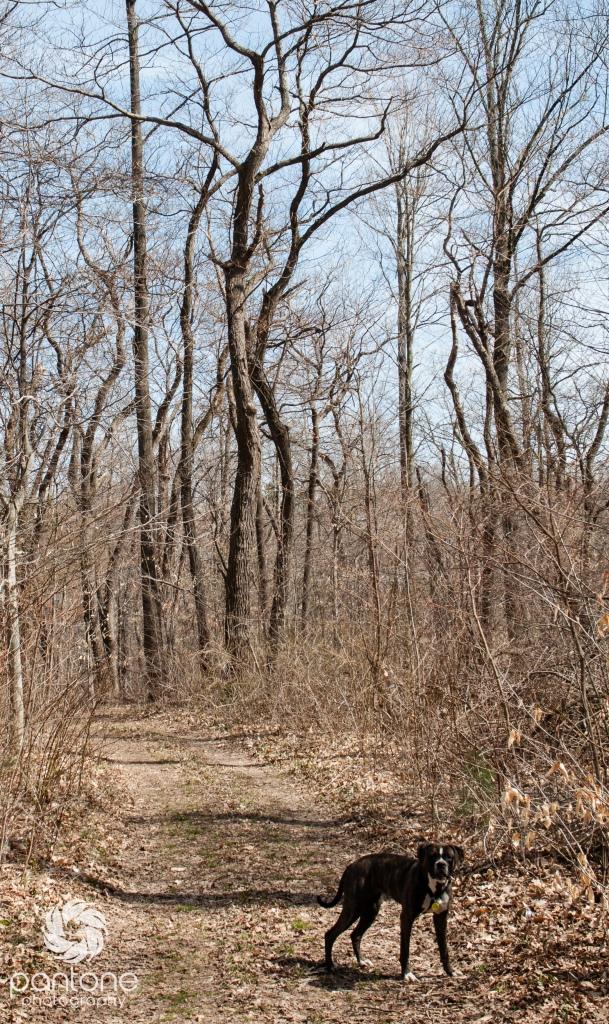 April 05, 2015-Trails