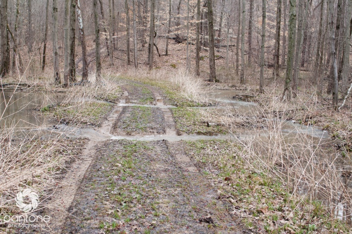 April 08, 2015-Trails
