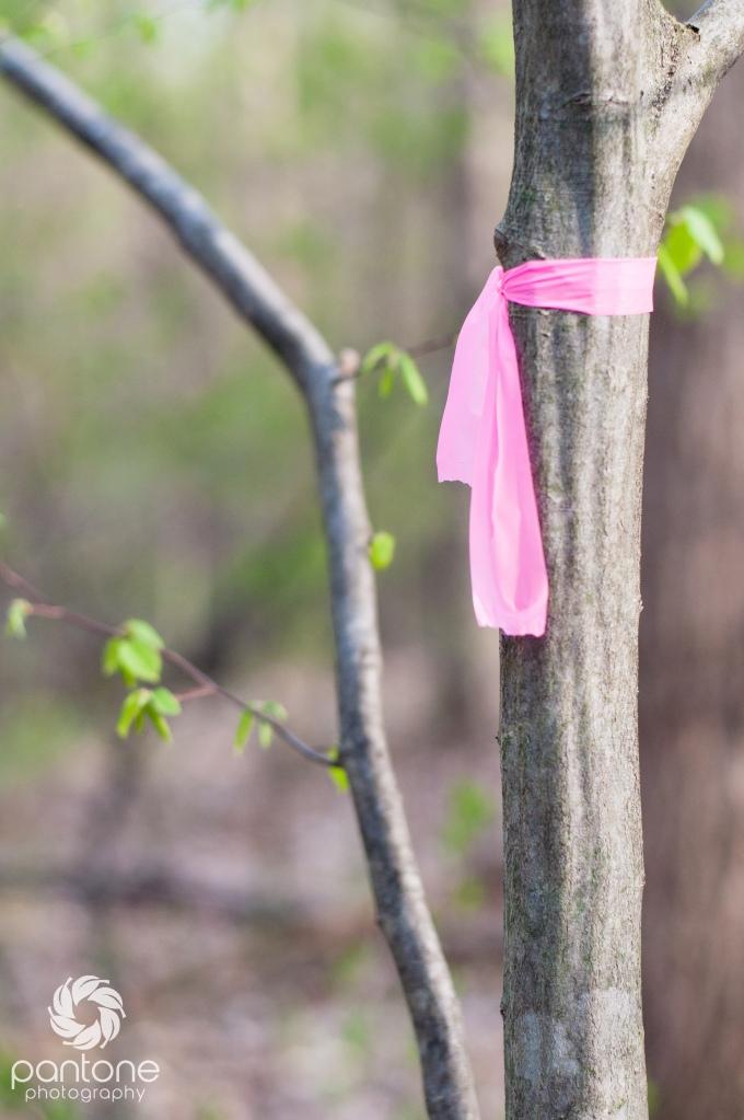 April 21, 2015-Trails