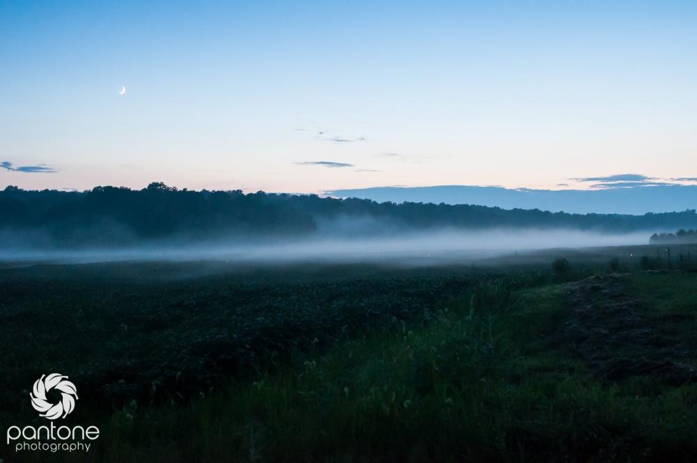 August 17, 2015 Fog