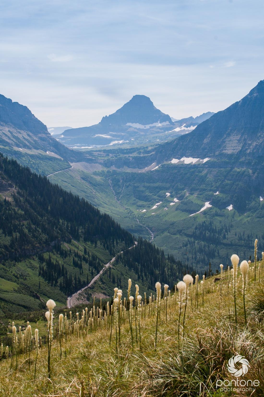 Highland Trail at Glacier National Park