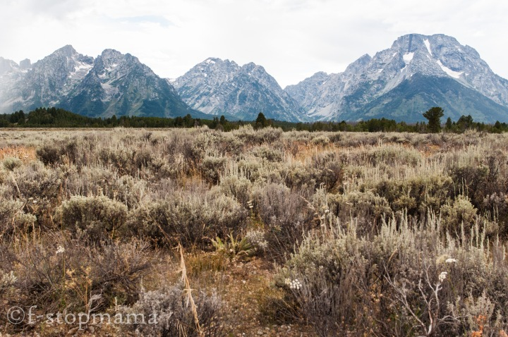 Travel Thursday – Grand Tetons