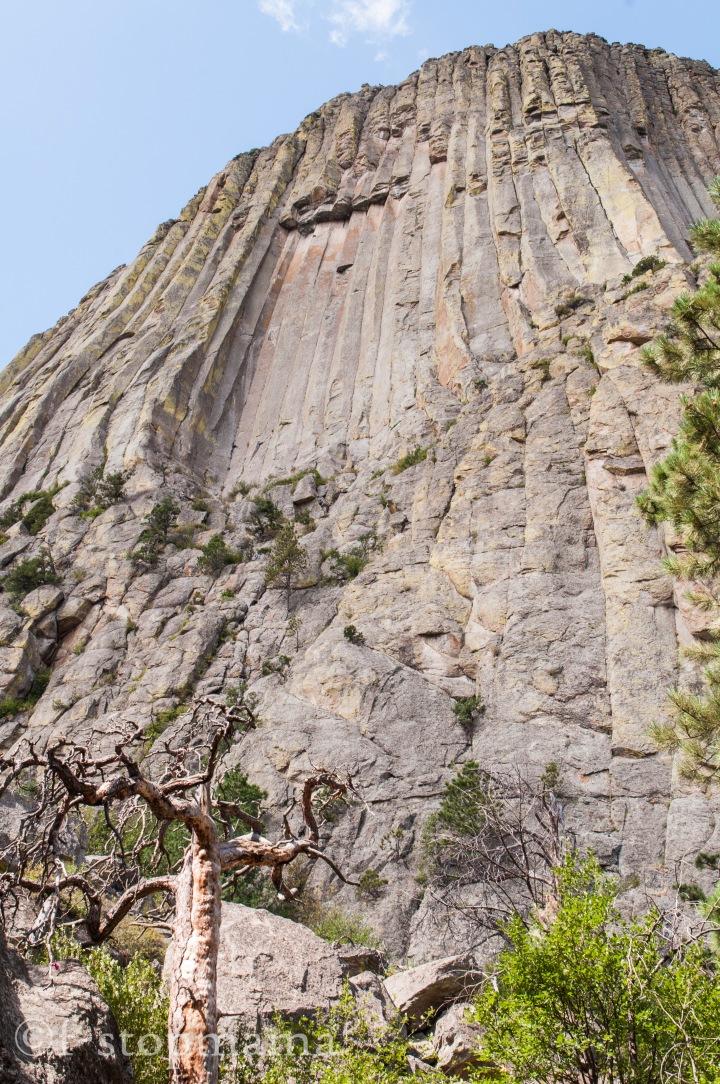 Devils Tower, Wyoming