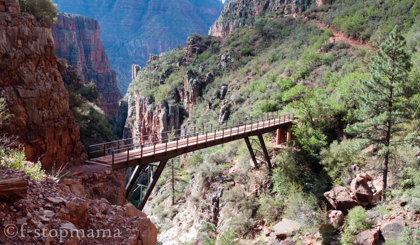 Bridge in the Grand Canyon