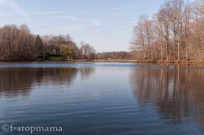 Lake in the spring