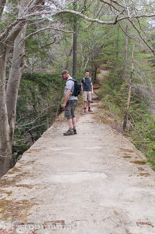 Pine Hills Nature Preserve