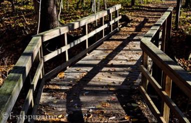 washington-township-park-125