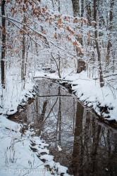 changing-seasons-december-037