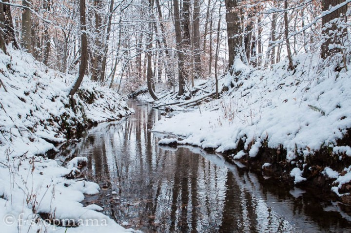 The Changing Seasons –December