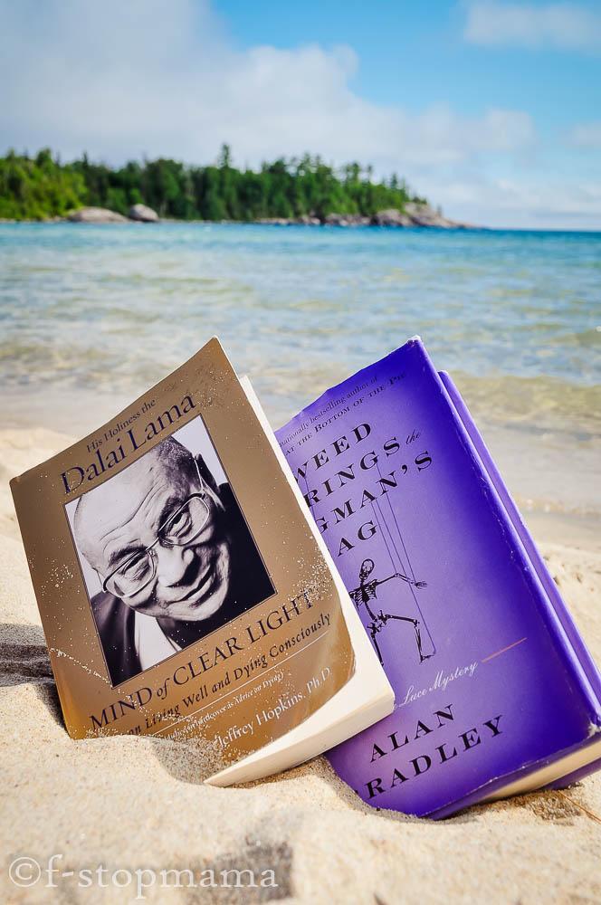books on Lake Superior