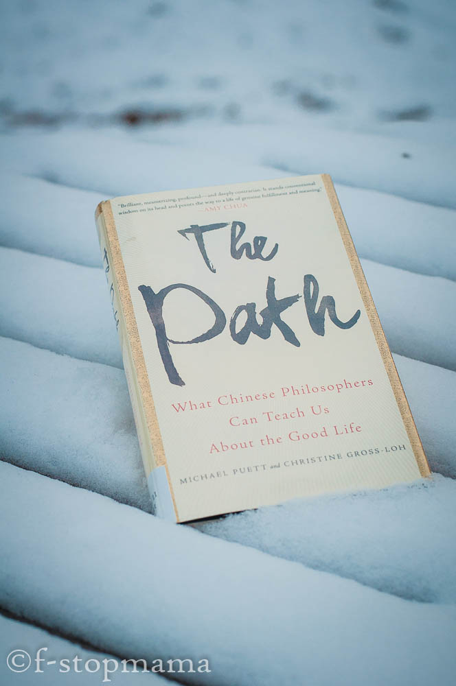 The Path, book in the snow