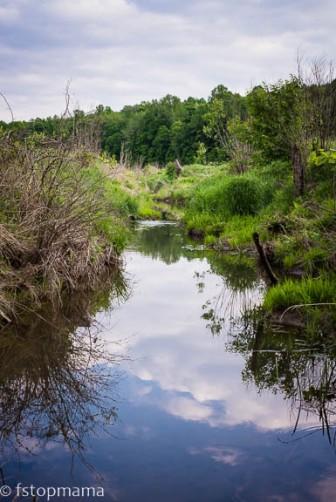 Serenity, creek