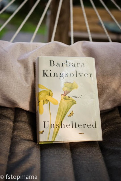 Barbara Kingsolver book