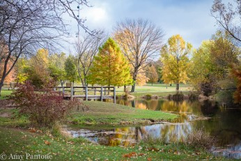 Fall at Southeastway Park
