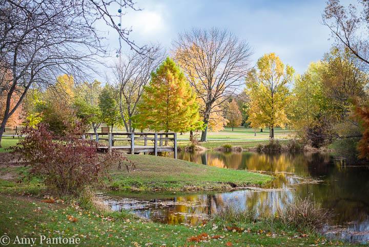 Fall at Southeastway Park