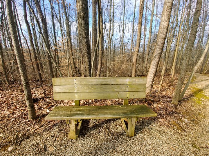 A Winter's Bench